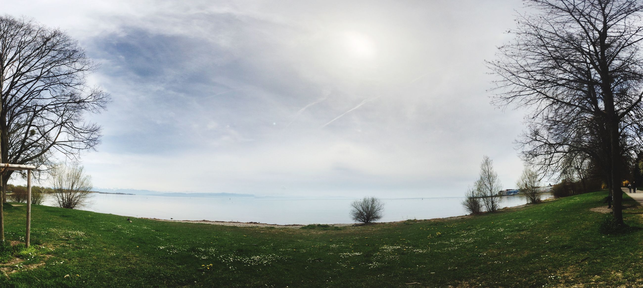 tree, sky, tranquility, tranquil scene, grass, scenics, bare tree, beauty in nature, nature, cloud - sky, water, branch, field, landscape, grassy, growth, lake, idyllic, non-urban scene, cloudy