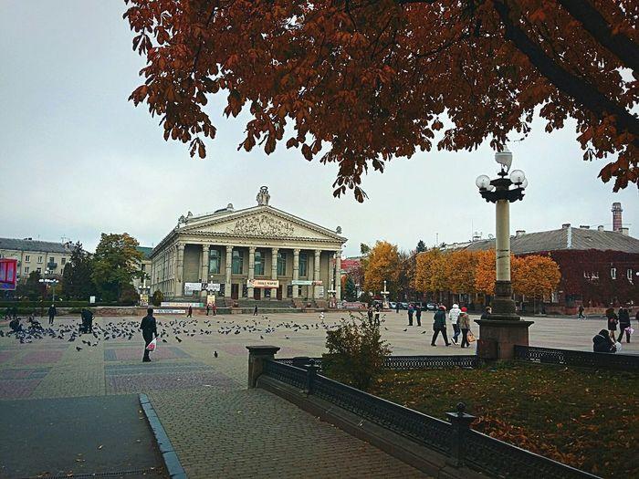 Ternopil EyeEm Best Shots Autumn Samsung Galaxy A3 EyeEm Nature Lover Leaf Trees Theater Area Ukraine City ArchiTexture EyeEm Nature Flag