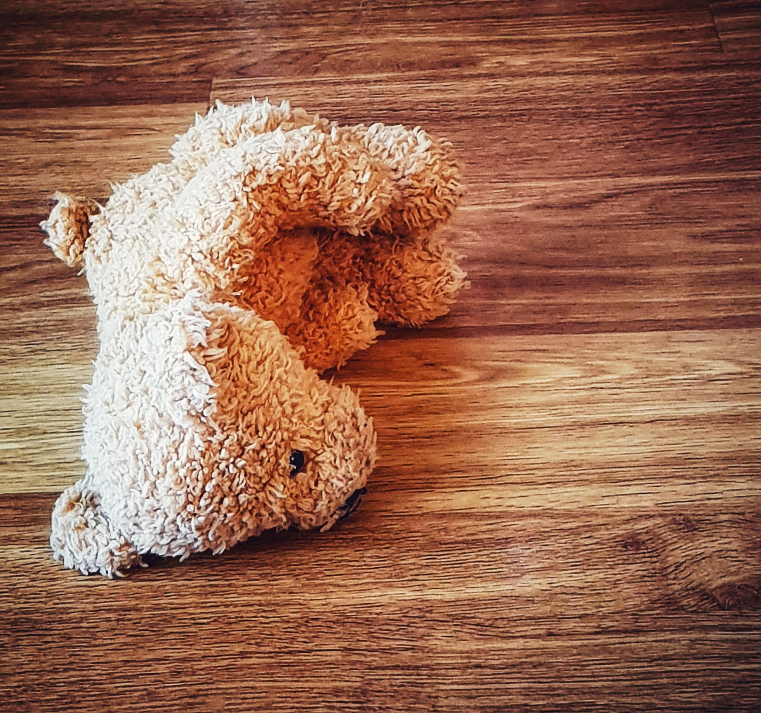 wood - material, indoors, stuffed toy, toy, brown, no people, still life, teddy bear, high angle view, table, wood, close-up, animal representation, flooring, hardwood floor, mammal, representation, directly above, baked, animal