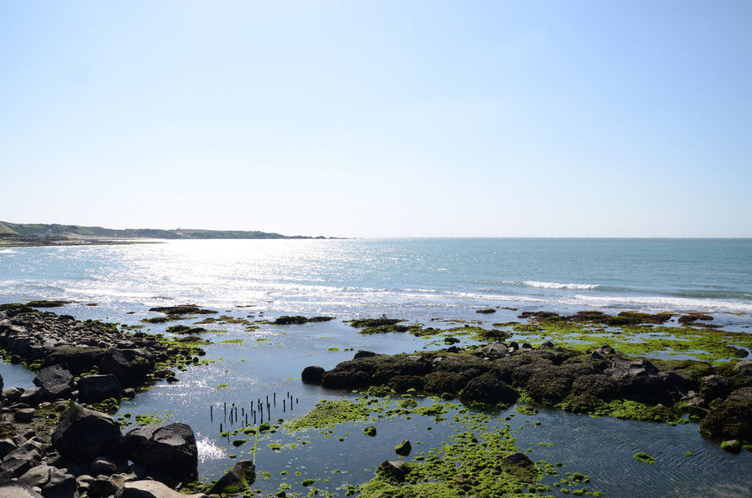 Beach Beauty In Nature Blue City Clear Sky Day Horizon Horizon Over Water Nature No People Outdoors Scenics Sea Sky Tranquil Scene Tranquility Travel Destinations Water