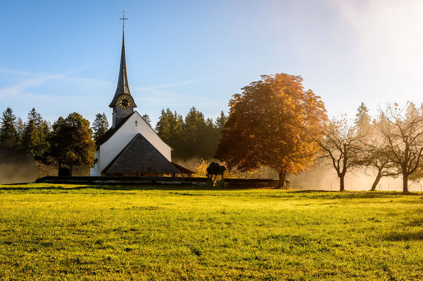 Architecture Church Cloud Day First Eyeem Photo Fog Forest Landscape No People Outdoors Place Of Worship Tree Trees