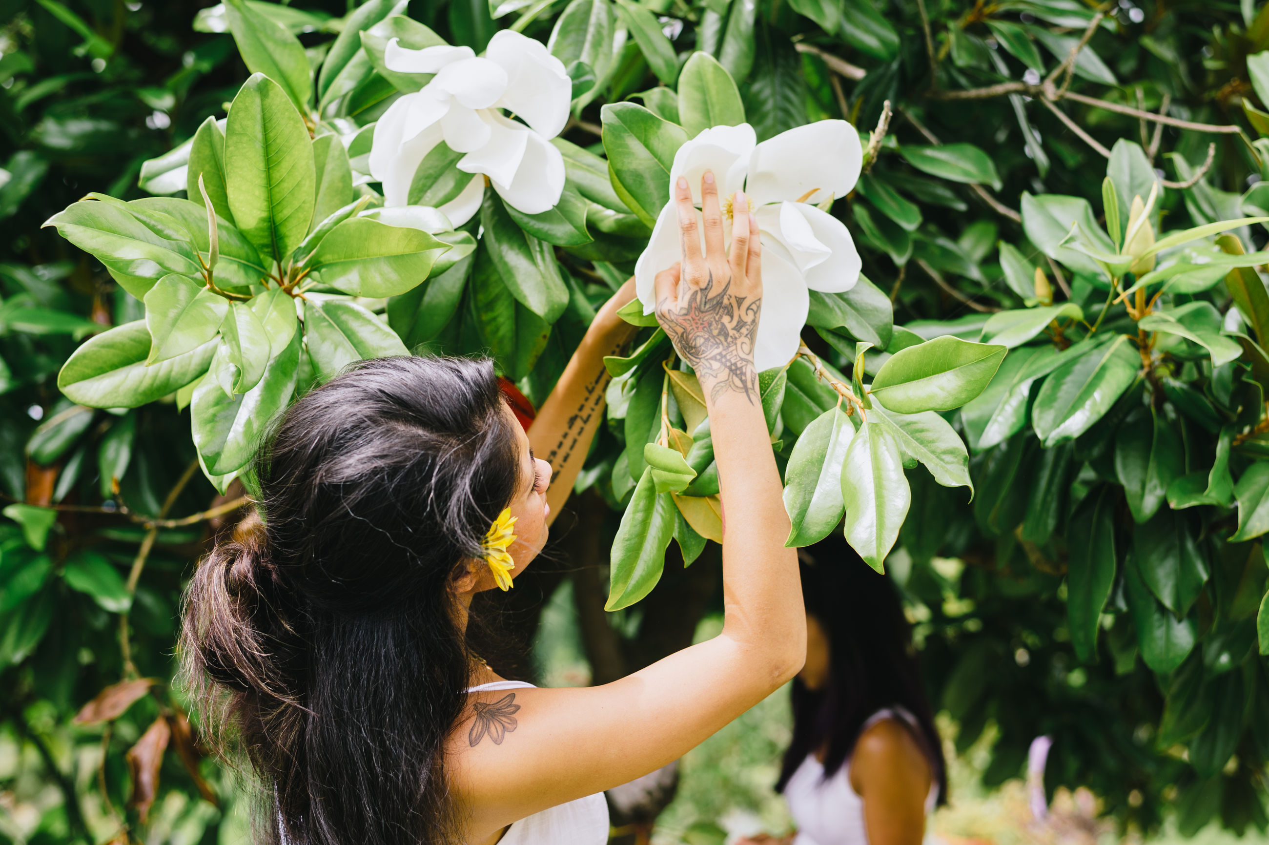 flower, real people, plant, nature, growth, one person, rear view, day, outdoors, leaf, fragility, beauty in nature, tree, childhood, women, lifestyles, branch, flower head, freshness, people