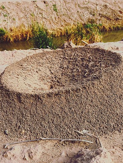 The Ant Bowl Nature Close-up Sand Rock - Object Non-urban Scene Plant Rough Arid Climate Rock Formation Outdoors Scenics Tranquil Scene Rocky Day Remote Physical Geography Growth Tranquility Mountain Beauty In Nature