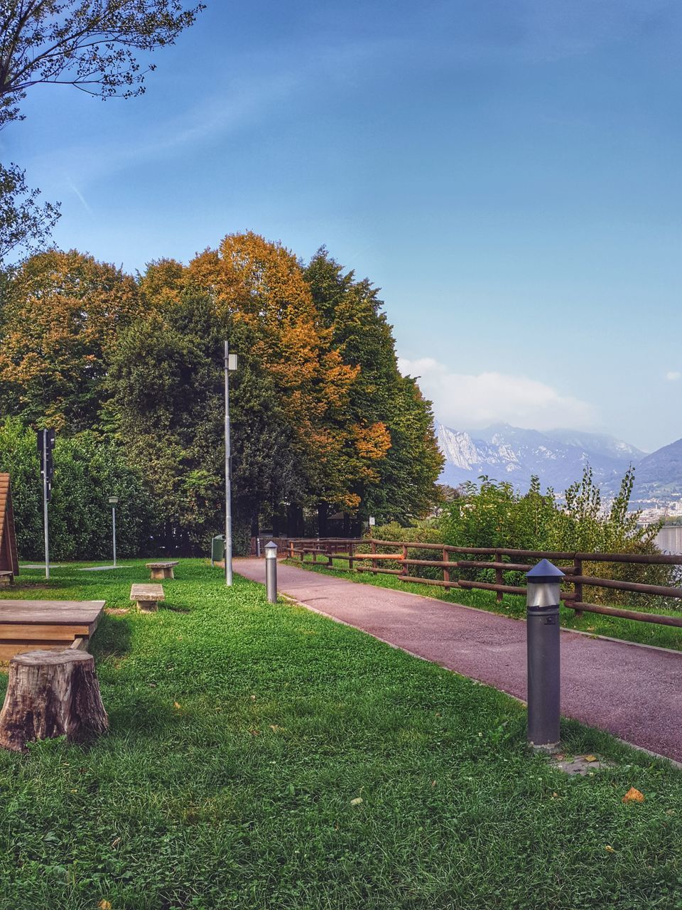 plant, tree, grass, nature, sky, green color, day, beauty in nature, field, no people, autumn, growth, tranquility, land, tranquil scene, change, footpath, scenics - nature, park, outdoors