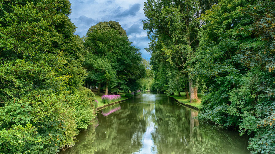 River crossing beautiful park full of vivid flowers and old trees. Minnewaterpark in Brugge, Belgium Beauty In Nature Day Forest Green Color Growth Nature No People Outdoors Scenics Sky Tranquil Scene Tranquility Tree Water Waterfront
