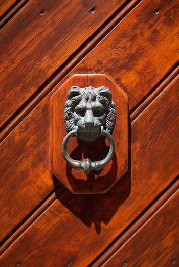 Closeup of a metal door knocker on wooden door