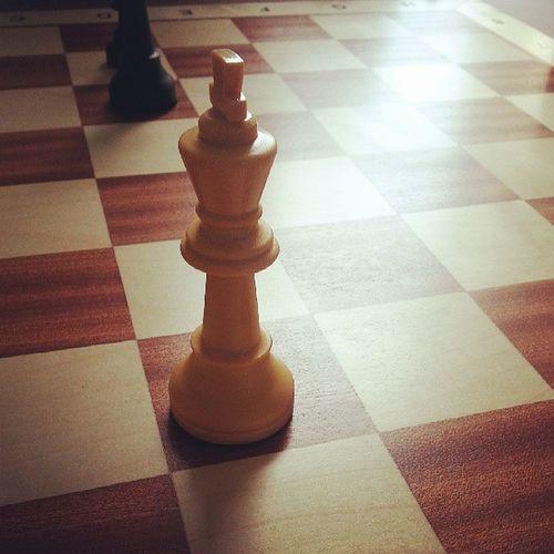 Chess Fucktheking
