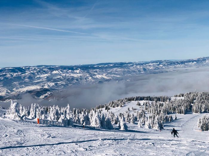 Skier going down the slope with view of mountains and pine trees in front Coniferous Tree Pine Tree Forest Blue Sky Movement Active Motion Skier Ski Resort  Resort Slope Winter Snow Scenics - Nature Beauty In Nature Nature Day Cold Temperature Winter Sport Sport Ski Holiday Skiing Mountain Mountain Range Beauty In Nature Environment Landscape Leisure Activity Vacations Frozen