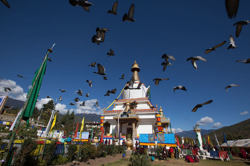 Bhutan Bhutan Buddist Temple Day Outdoors Paro Scenary Thimphu