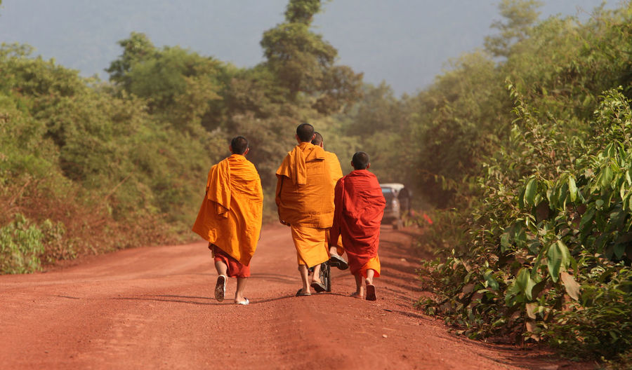 Rear view of monks walking on road amidst trees