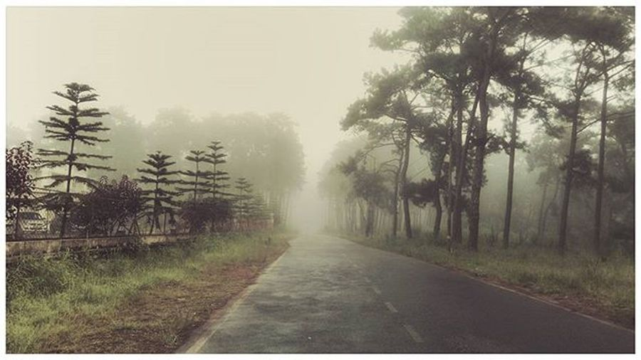 Serenity Lonelyroad Beautifulday Beautifulheart Sofresh Sopure Campus LawDeptt Nehu 😊😊😊😊