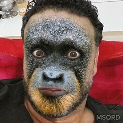 Monkey Wasama Janzour Tripoli Libya قرد وسامة جنزور طرابلس ليبيا