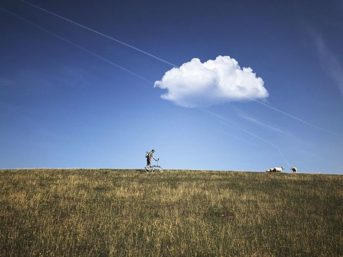 Sky Cloud - Sky Field Land Grass Nature Landscape Environment Plant Day Horizon Over Land Blue Beauty In Nature Horizon Tranquility Scenics - Nature Tranquil Scene Outdoors One Person Vapor Trail Non-urban Scene Sheep My Best Photo My Best Photo Stay Out
