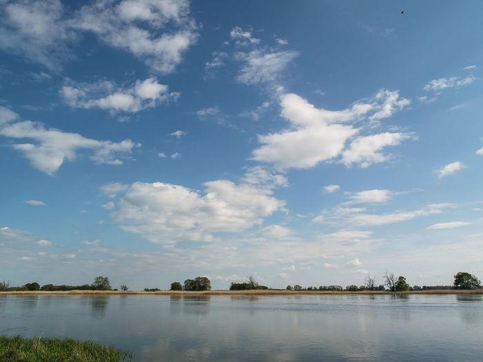 elbe river in north germany Deutschland Elbe Fluss Flusslandschaft Flussufer Germany Himmel Prignitz River Sky Wolken