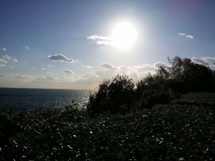 Buona giornata Hello World Sun Light Say It Without Words