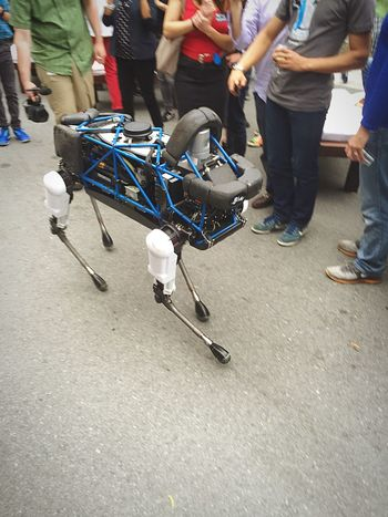 Spot, the robot dog. Robot