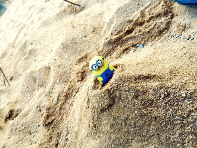 BANANAAA 😍🍌 Minions Sand Sunset Hello World Happiness Kids Landscape Focus Yellow Toys