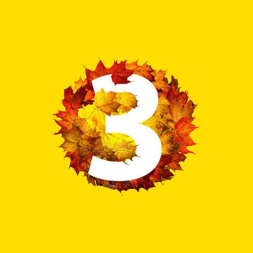 Digital composite image of autumn leaves against sky