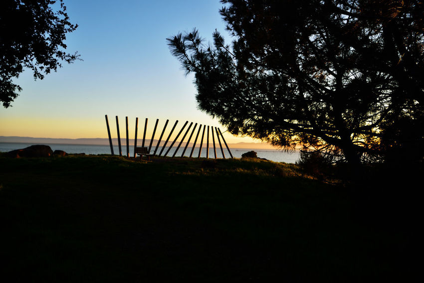 Sunset @ Oyster Bay Pt 9 San Leandro, Ca. Stainless Steel Sculpture Rising Wave 16 Poles Artist : Roger Berry All About Angles Sunset Sunset Silhouettes Sunset Lovers Landscape Landscape_photography Landscape_Collection Sunset_collection Sunset Photography Trees Nature Beauty In Nature Nature_collection Marin Headlands San Francisco Bay Boulders Catwalk Hilltop Scenic