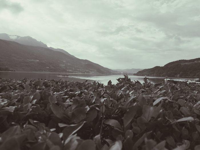 Caldonazzo's Lake ( italy )