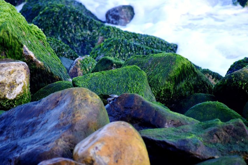 Rock - Object Nature Outdoors Mountain Green Color Scenics Beach Water Close-up Mossy Rock Mossy Stones Stones Green Moss Roc EyeEmNewHere Perspectives On Nature Be. Ready.