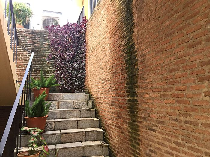 Steps Architecture Built Structure Brick Wall Staircase Stairway Stairways Stairs