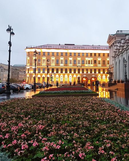 Garden of Mariinsky Palace (right) and Lotte Hotel, St Petersburg Garden Green Trees Flowers Flowers,Plants & Garden Nature Buildings Building Old Buildings Wet Rainy Lights Night Saintpetersburg Stpetersburg Russian Russia СанктПетербург Lottehotel City Politics And Government Cityscape King - Royal Person Flower Architecture Building Exterior Built Structure Palace Historic Royalty