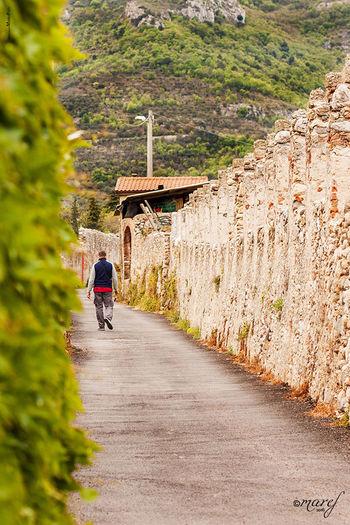 .sara' difficile vederti da dietro/sulla strada che imboccherai/mentre piano ti allontanerai/a cercar da solo quello che sarai/A modo tuo andrai/a modo tuo camminerai e cadrai, ti alzerai sempre a modo tuo... Mummy Love  Toirano Liguria