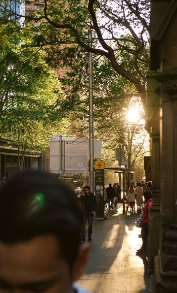 Golden hour Tree City Lens Flare Sunlight Real People City Life Architecture Women Building Exterior Outdoors Large Group Of People Adults Only Sunset People Day Adult Goldenhour