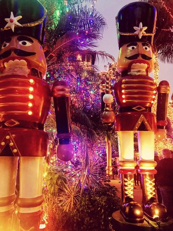 The Nutcracker  Christmas Tree Celebration Night