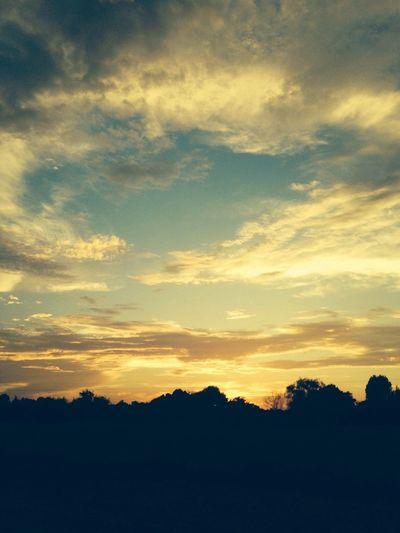 Beautiful Alabama sunset Sunset Silhouettes Country Life Amazing Sunset