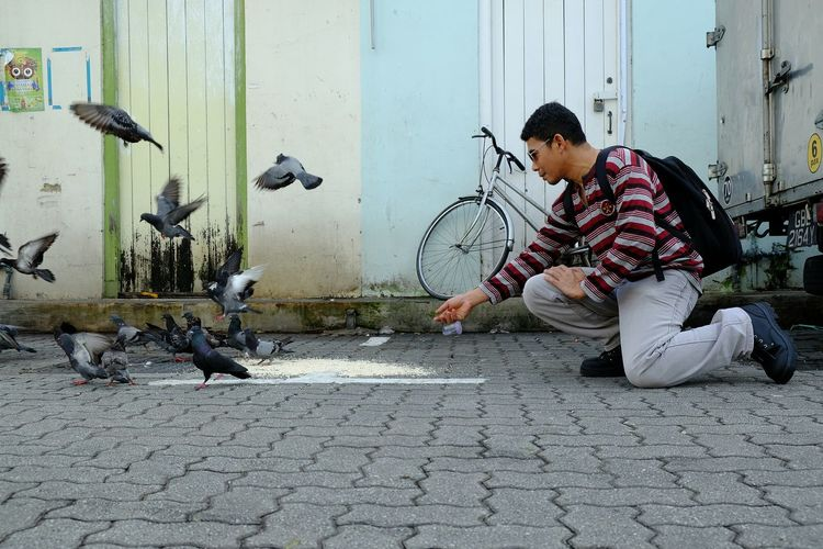 feeding Feeding  Feeding Animals Feeding The Birds Feeding Pigeons Streetphotography Pigeon Men Ghetto Working