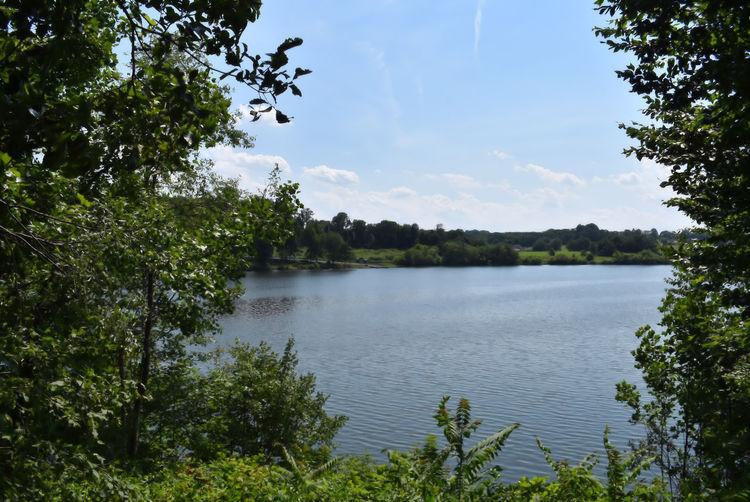 Relaxing Lake