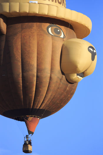 Smoky Bear Hot Air Balloons Kanab Utah Festival Balloons🎈 Balloons In The Sky Balloonfiesta  Balloonfest Ballooning Bear Teddy Bears Canon Canon 5d Mark Lll EyeEm Best Shots Aircraft Travel People In The Sky Riding Kanab Utah
