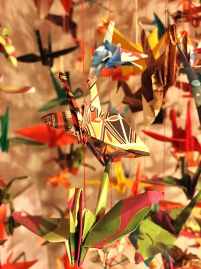1000 Paper Cranes Fixed Focus Hope Colorful First Eyeem Photo EyeEmNewHere