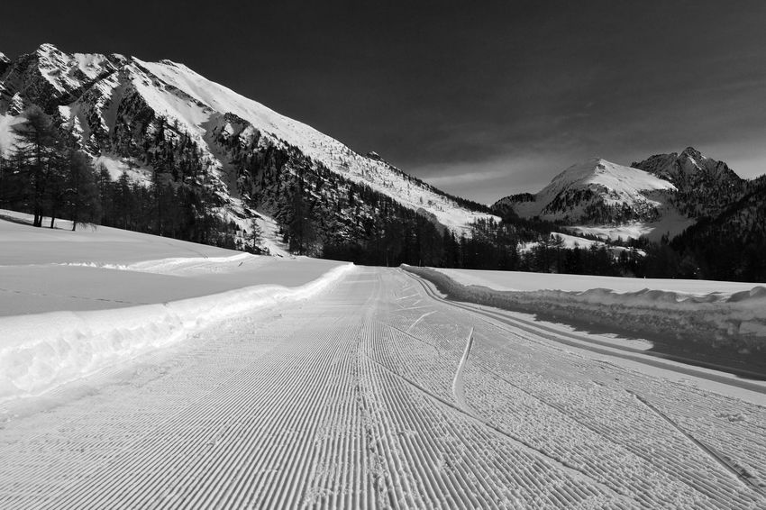 Skiing Beauty In Nature Cold Temperature Day Landscape Mountain Mountain Range Nature No People Outdoors Scenics Sky Snow Snowcat The Way Forward Tracks Tracks In Snow Tranquil Scene Tranquility Tree Winter