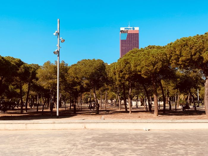 Trees and buildings in city against clear blue sky