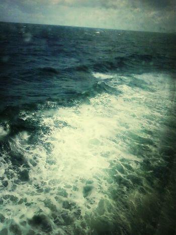 sea/see me