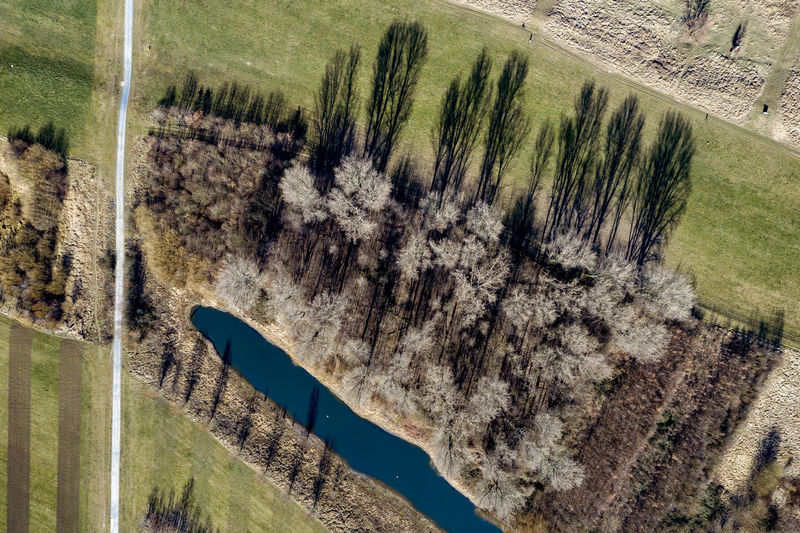 first sunny hours in Rheinaue near Cologne-Worringen No People Nature Day Outdoors Dronephotography Aerial Photography Riverside Trees Lake Plant Landscape Green Color Water