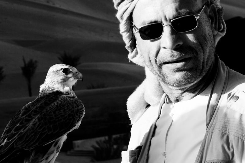 Arabic Authentic Authentic Moments Bird Falcon Falconer Looking At Camera One Animal Portrait Zoology People And Places Monochrome Photography Animal Animals Snap A Stranger