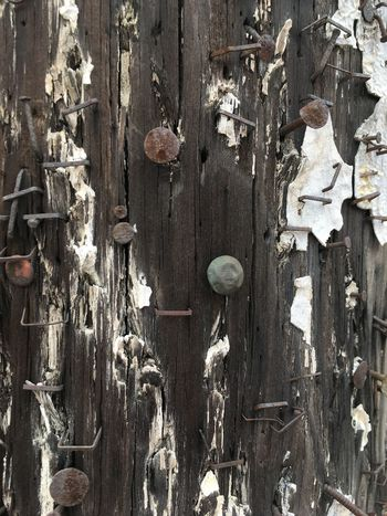 Abundance Backgrounds Close-up Day Extreme Close Up Full Frame Large Group Of Objects Nails No People Old Paint Outdoors Weathered Wood Pole Wooden
