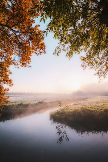 Beautiful nature Reflection Tree Landscape Autumn Beauty In Nature Leaf Scenics Nature Sunset Tranquil Scene Tranquility Water Fog Morning Sky Outdoors Sun Beauty