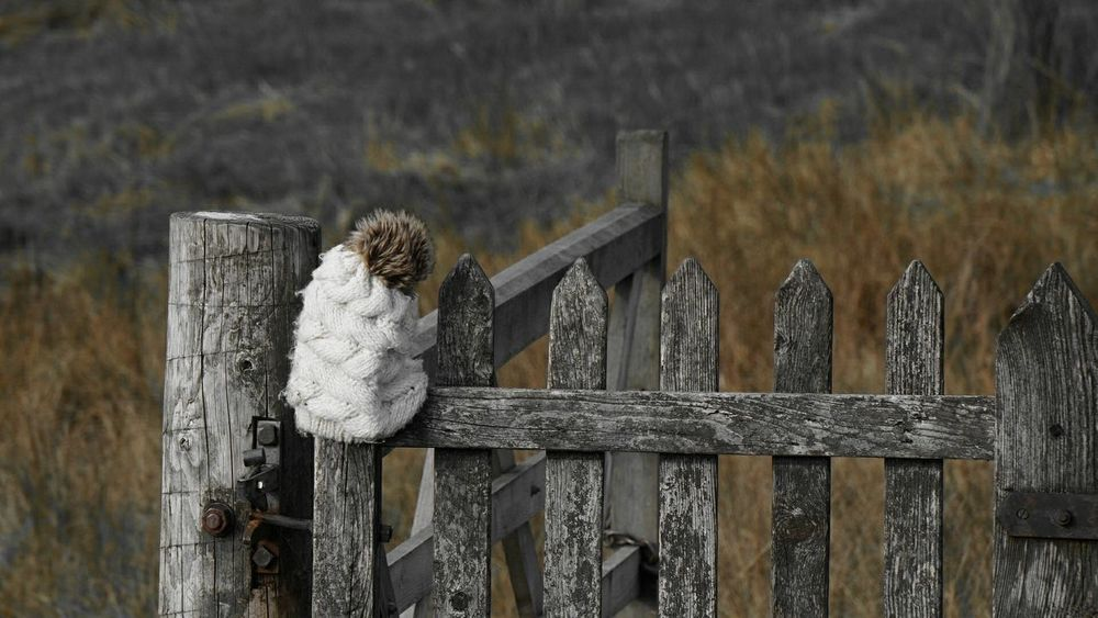 """""""First up, the lost and found has gone missing. It itself, is lost. So please try not to lose anything until we find it."""" Michael Scott. Wool Hat Bobble Hat  Wooden Gate Rural Scene Lost And Found Farmland The Week On EyeEm Autumn Silvered Wood EyeEm Nature Lover Field Walking The Fells Old Wooden Gate Weathered Wood Look What I Found Lonley Hat Coloursplash"""