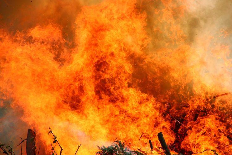 Detail shot of fire