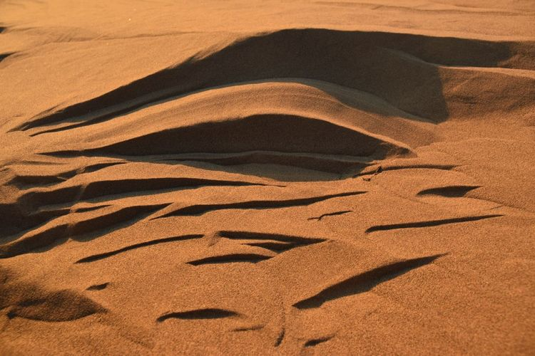 Sahara sand Sand Land Sunlight Pattern Landscape Tranquility Tranquil Scene No People Sand Dune Desert Climate Scenics - Nature Arid Climate Environment Day Full Frame Nature High Angle View