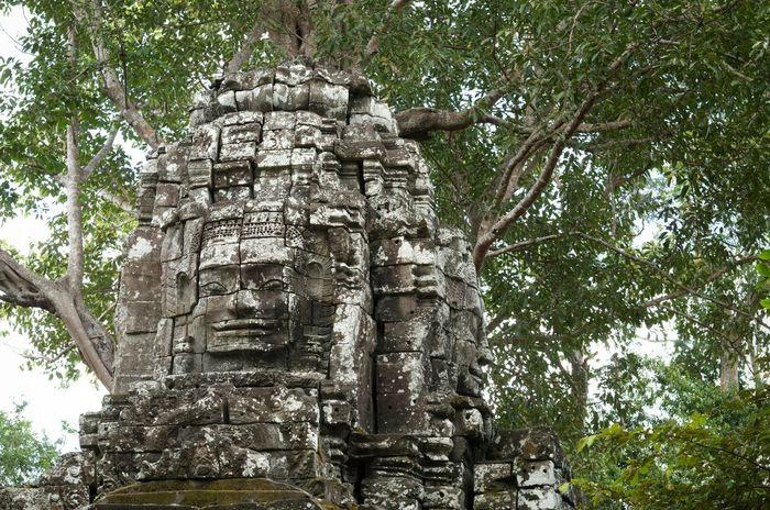 Angkor Siem Reap Cambodia Travel