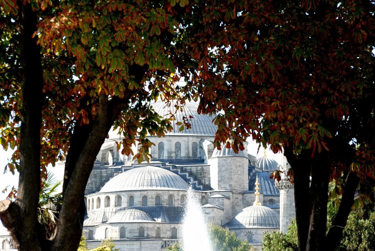 View through trees to fountain and mosque during autumn