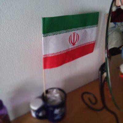 Los inquilinos temporales nos dejaron una bandera de su pais, Iran .