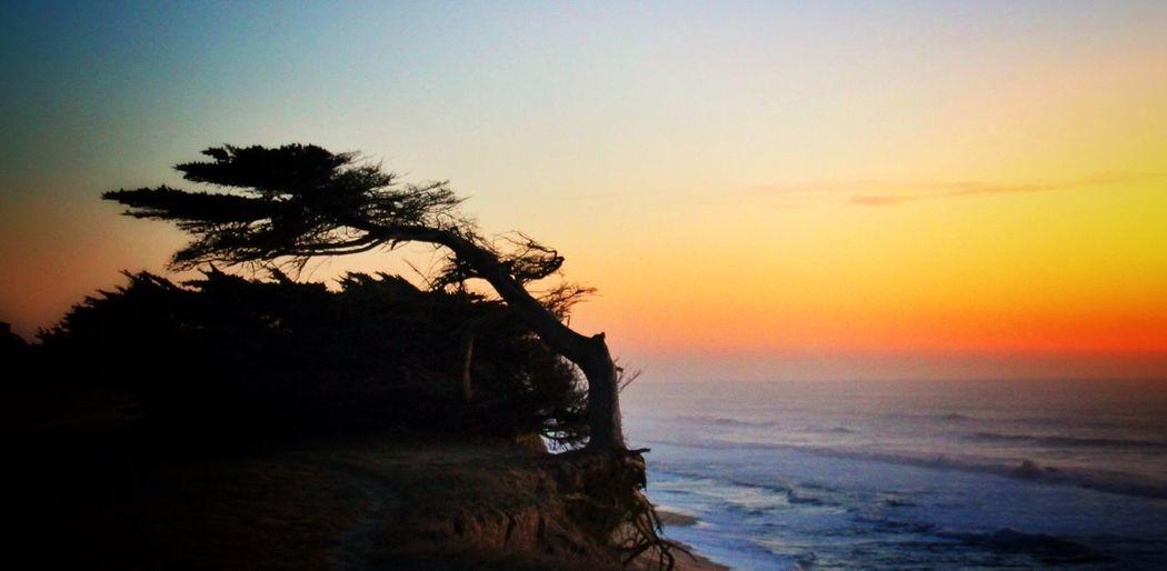 Clinging to the edge Tadaa Community Femalephotographerofthemonth EyeEm Best Shots Eye4photography  Sunset