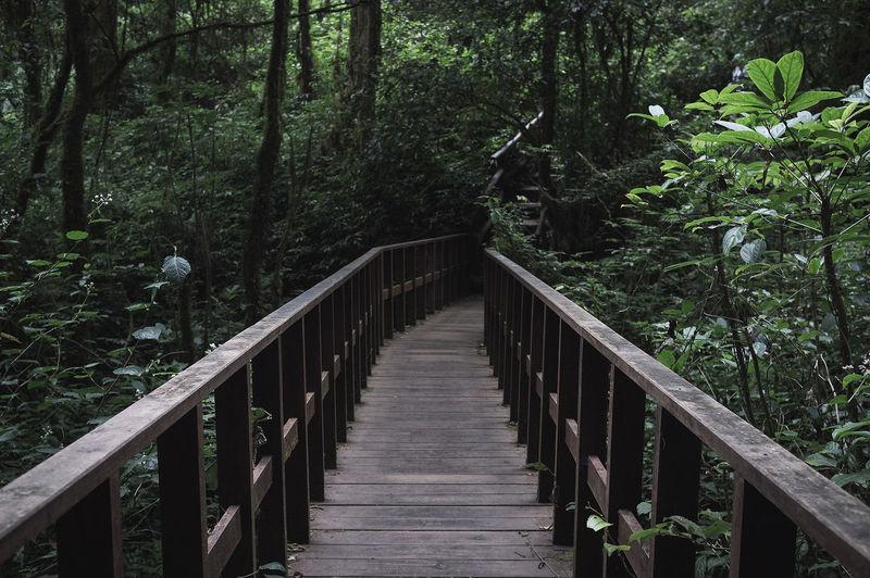 Railing Bridge